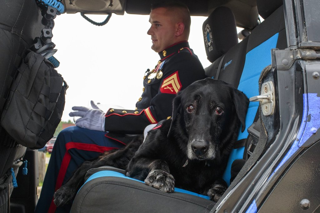 U.S. Marine veteran Jeff DeYoung and Cena a 10-year-old black lab who was a military service dog ride away for his last ride before being put down aboard the LST 393 in downtown Muskegon, Michigan, on July 26, 2017. (Joel Bissell/Muskegon Chronicle via AP)