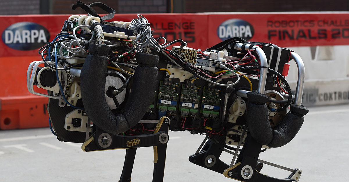 A robotic cheetah runs during a demonstration at the finals of the DARPA Robotics Challenge at the Fairplex complex in Pomona, California on June 6, 2015. Robots from six countries including the United States, Japan and South Korea competed against each other in a disaster response challenge (Mark Ralson /AFP/Getty Images)