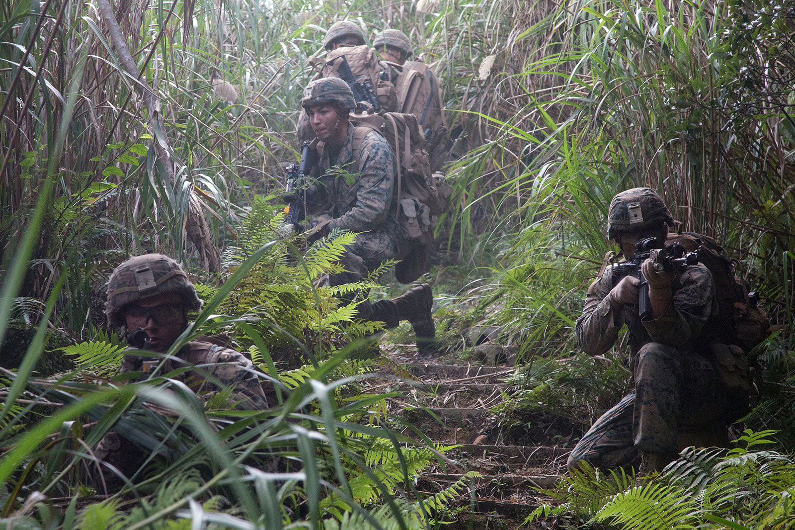 Marines provide security after conducting simulated village raids at the Jungle Warfare Training Center in Okinawa. Japan, on Dec. 6, 2017, during the 3rd Marine Division Annual Squad Competition. (Cpl. Carl King/Marine Corps)
