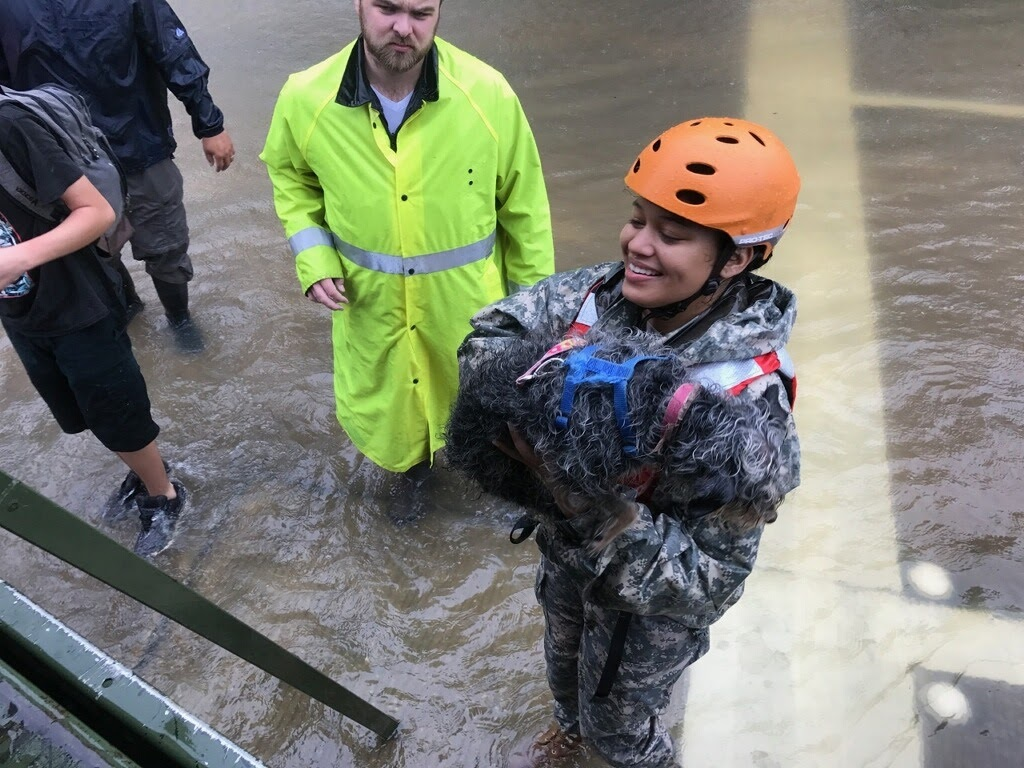 Soldiers with the Texas Army National Guard support relief efforts to residents of Cyprus Creek as they fight back from the effects of Hurricane Harvey. (Capt. Martha Nigrelle/Army)