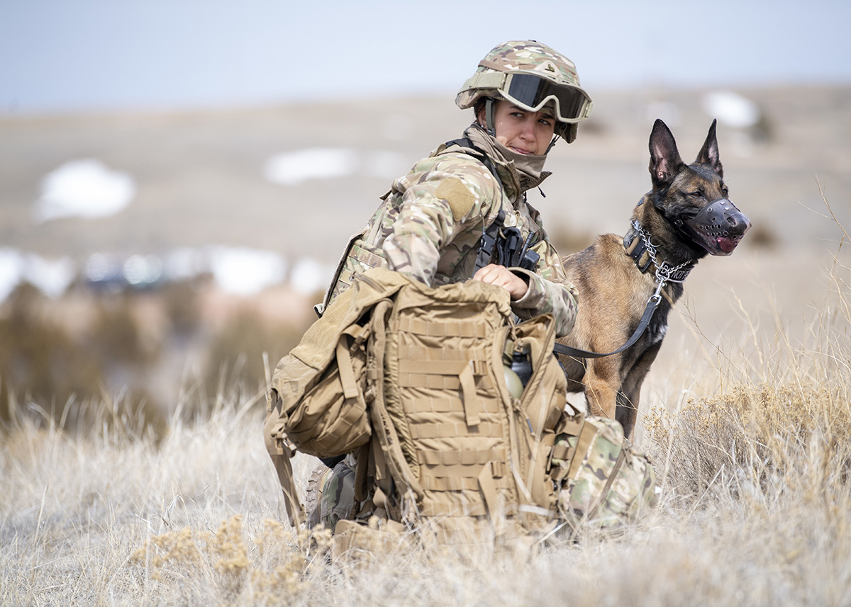 Staff Sgt. Lindsay Zaccardi and military working dog Joan dig into their pack for medical supplies on March 26, 2019, during a mission readiness exercise at Camp Guernsey, Wyo. (1st Lt. Faith Brodkorb/Air Force)