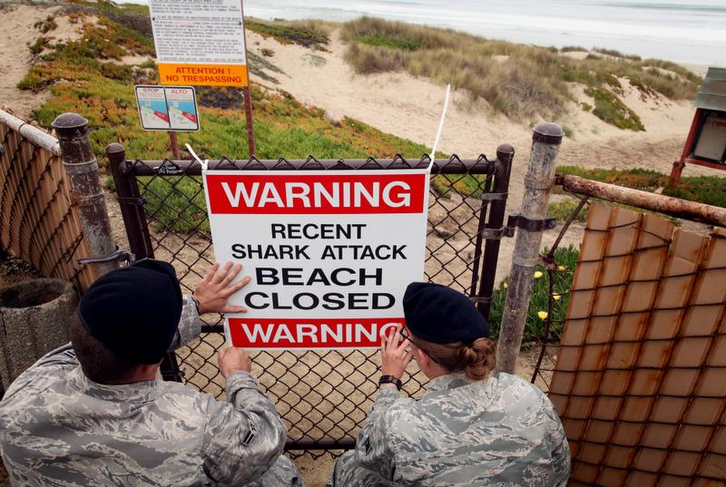 Shark attack closes beaches at Vandenberg