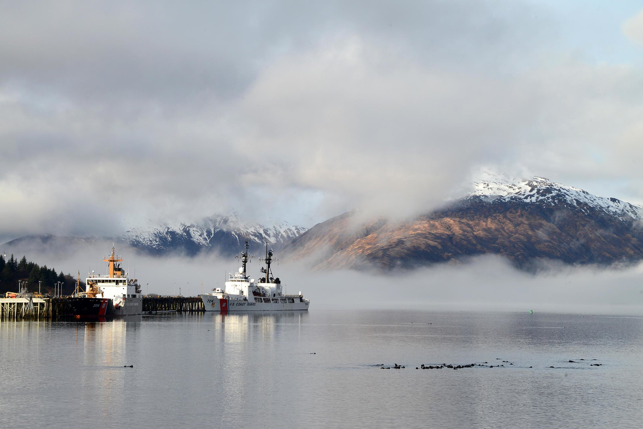 The Coast Guard Cutters SPAR (WLB 206) and Douglas Munro (WHEC 724) are moored at home port while a raft of otters gather in Womens Bay, in Kodiak, Alaska, May 1, 2019. (Chief Petty Officer Charly Hengen/Coast Guard0