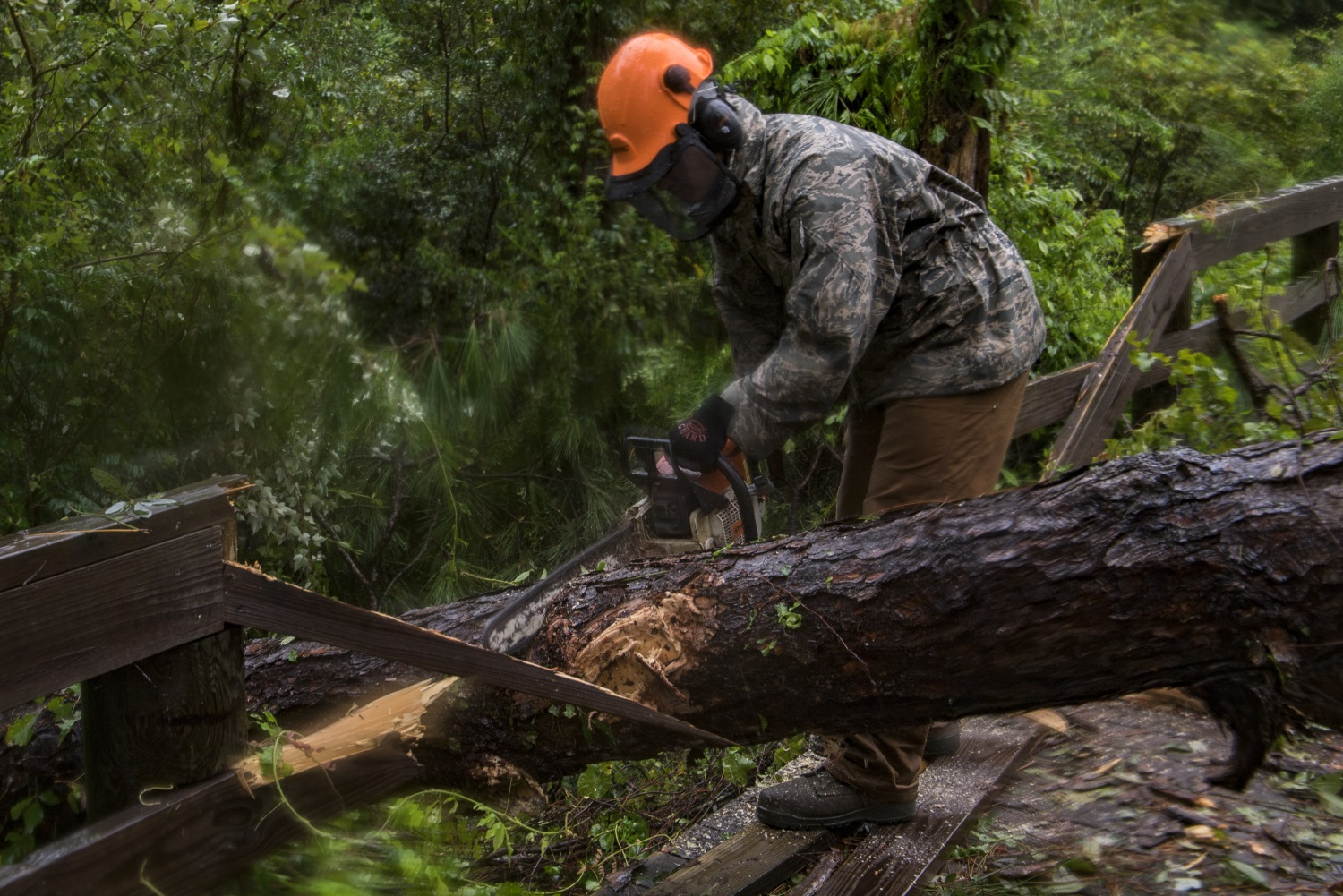 Senior Airman Justin Benito, 23rd Civil Engineer Squadron heavy equipment operator, uses a chainsaw to cut a fallen tree's trunk on Sept. 11, 2017, at Moody Air Force Base, Ga. Moody's ride-out team consisted of approximately 80 airmen who were tasked with immediately responding to mission-inhibiting damage caused by Hurricane Irma. (Airman 1st Class Daniel Snider/Air Force)
