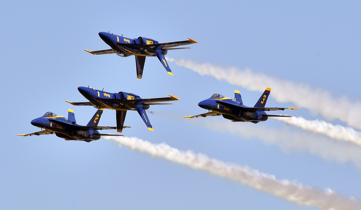 Bird flies into jet engine during Blue Angels air show, causing $1 million in damages