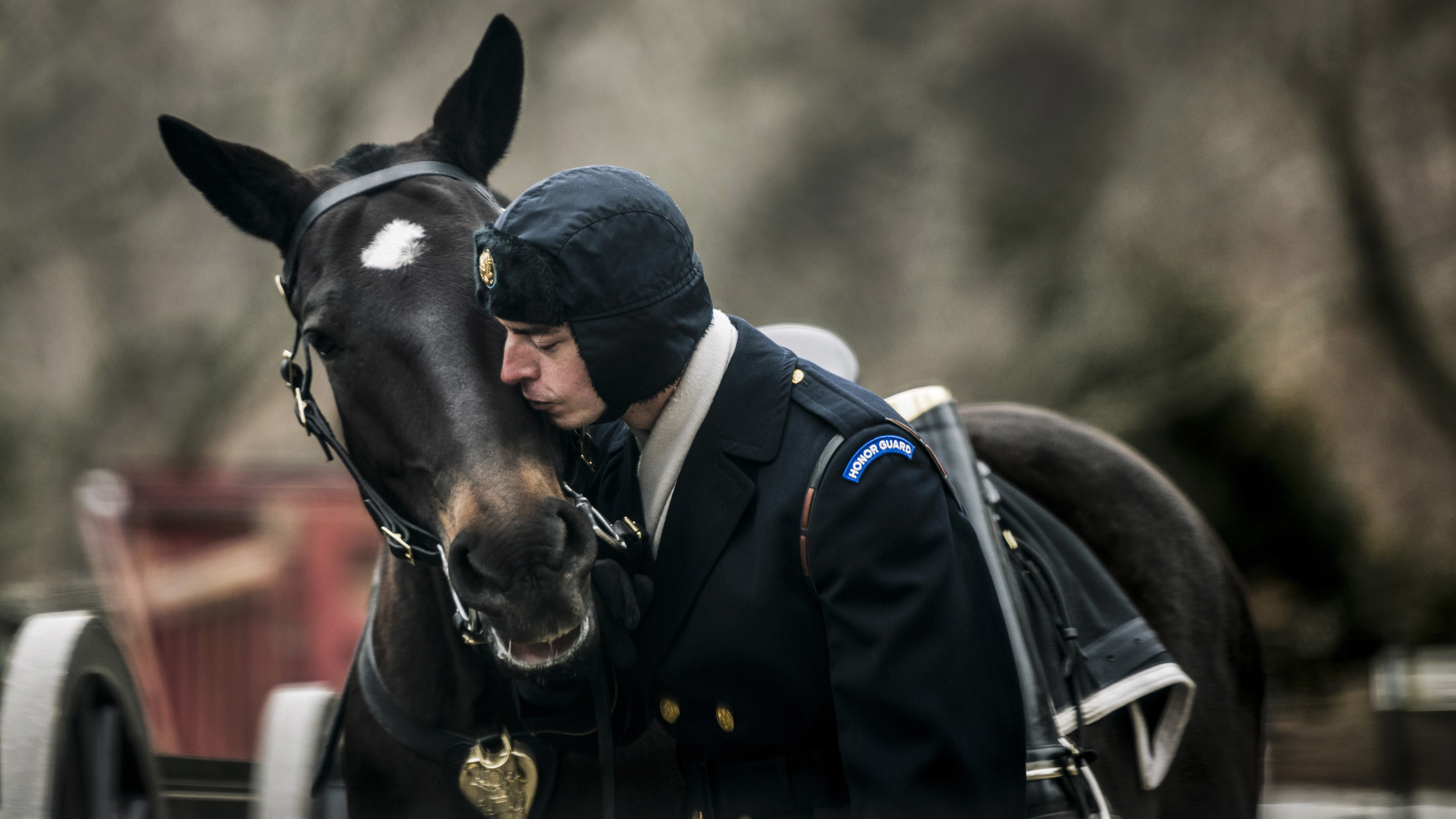 Spc. Colin Martin, 3d U.S. Infantry Regiment (Old Guard) gives a kiss to Hank, an 11 years old Caisson Platoon horse, before conducting funeral training at Arlington National Cemetery, Arlington, Virginia, Feb. 6, 2018. (Elizabeth Fraser/ Arlington National Cemetery)
