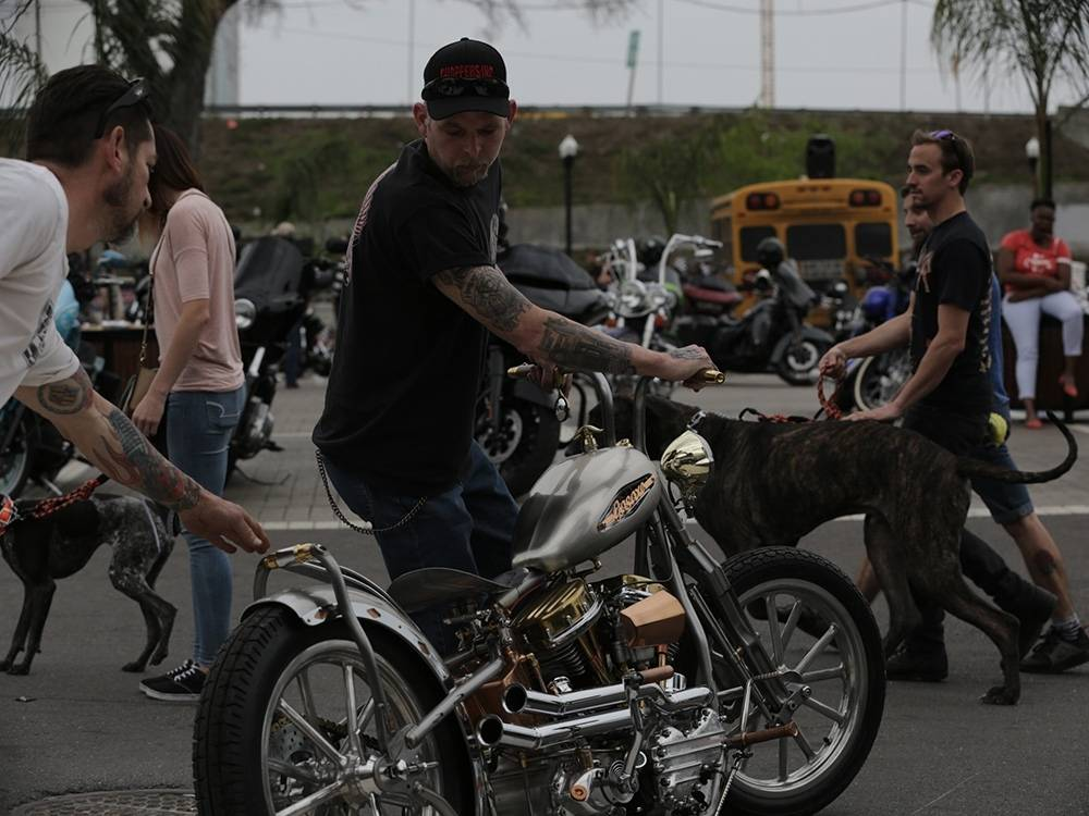 This Panhead was definitely getting a lot of looks. So was the horse ... er, Great Dane ... behind it. (Jordan Mastagni)